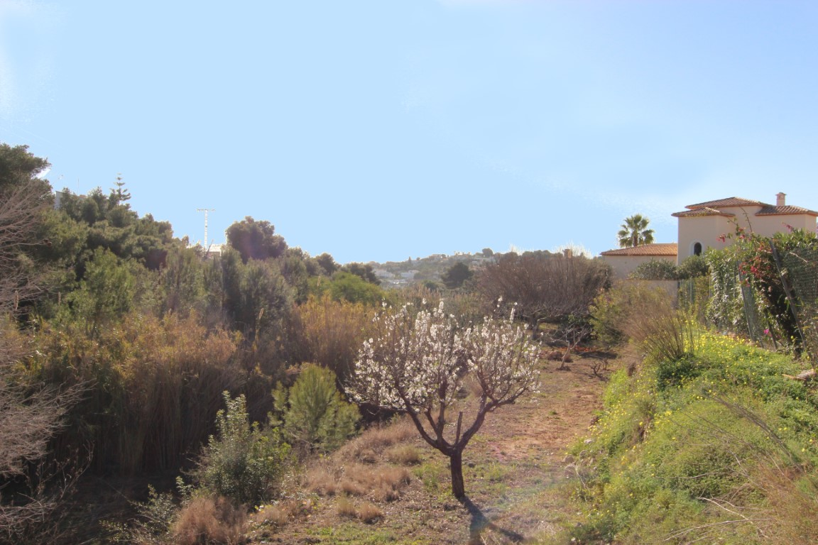 Plot in Benissa